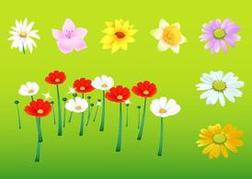 Spring Floral Graphics