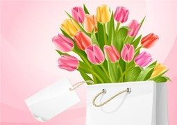 Bouquet of tulip flowers in the white bag