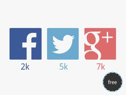 Flat Social Network Icons (Vector)