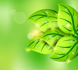 Green Leaf Spring Vector Background (Free)
