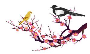 Lucky vector case classical material - Magpie Mui Map