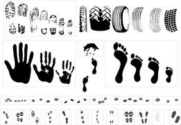 Vector Traces Of Footprints Tires