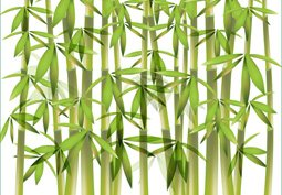 Free vector bamboo background