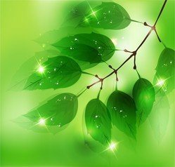 Nature Background With