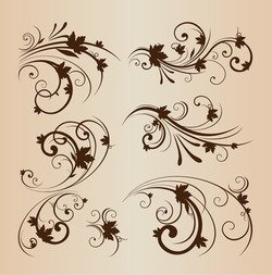 Vector Illustration Set of Swirling Decorative Floral Elements