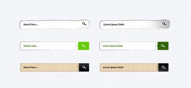 Search Field PSD Collection