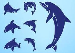 Dolphin Silhouettes Set
