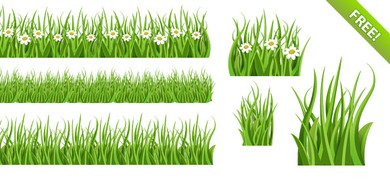 Green Grass PSD